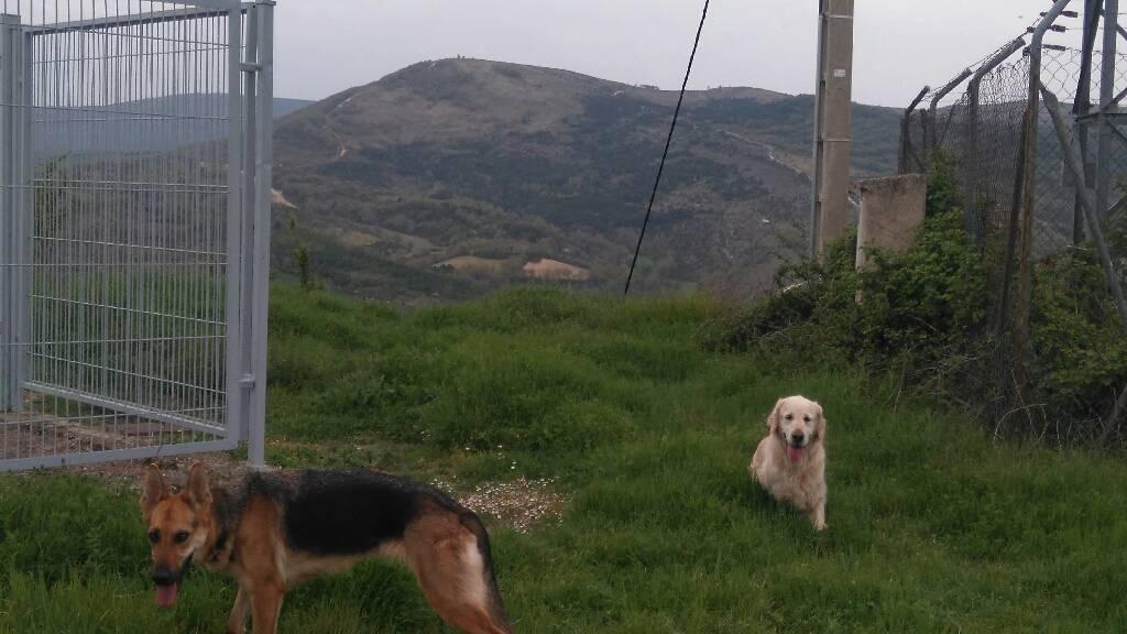 MIKEL ARRIBAS erabiltzailea Cerro del Castillo puntan, 2017-04-25 01:20