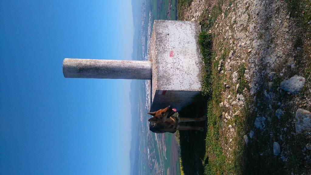 MIKEL ARRIBAS erabiltzailea San Miguel puntan, 2017-04-14 12:47
