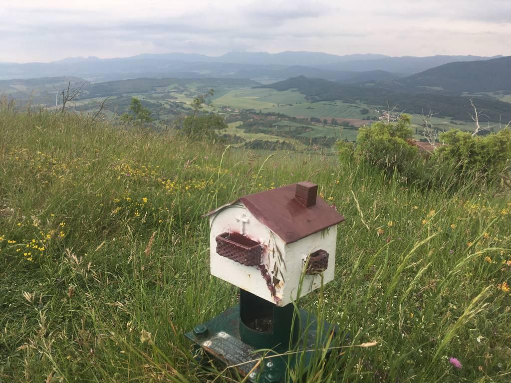zigor ruiz erabiltzailea Cerro puntan, 2020-06-03 15:40