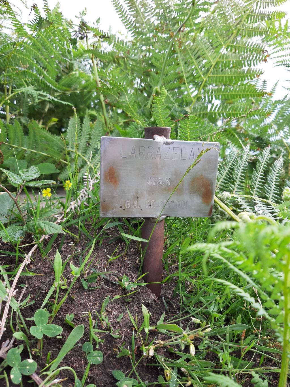 Irrintzi L erabiltzailea Larrazelai puntan, 2020-06-15 09:34