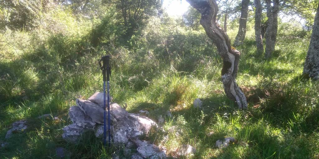 javier aldama erabiltzailea Alto de las Carboneras puntan, 2020-07-04 11:06