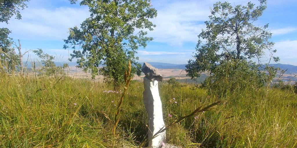 MIKEL ARRIBAS erabiltzailea Cerro puntan, 2020-07-14 09:39