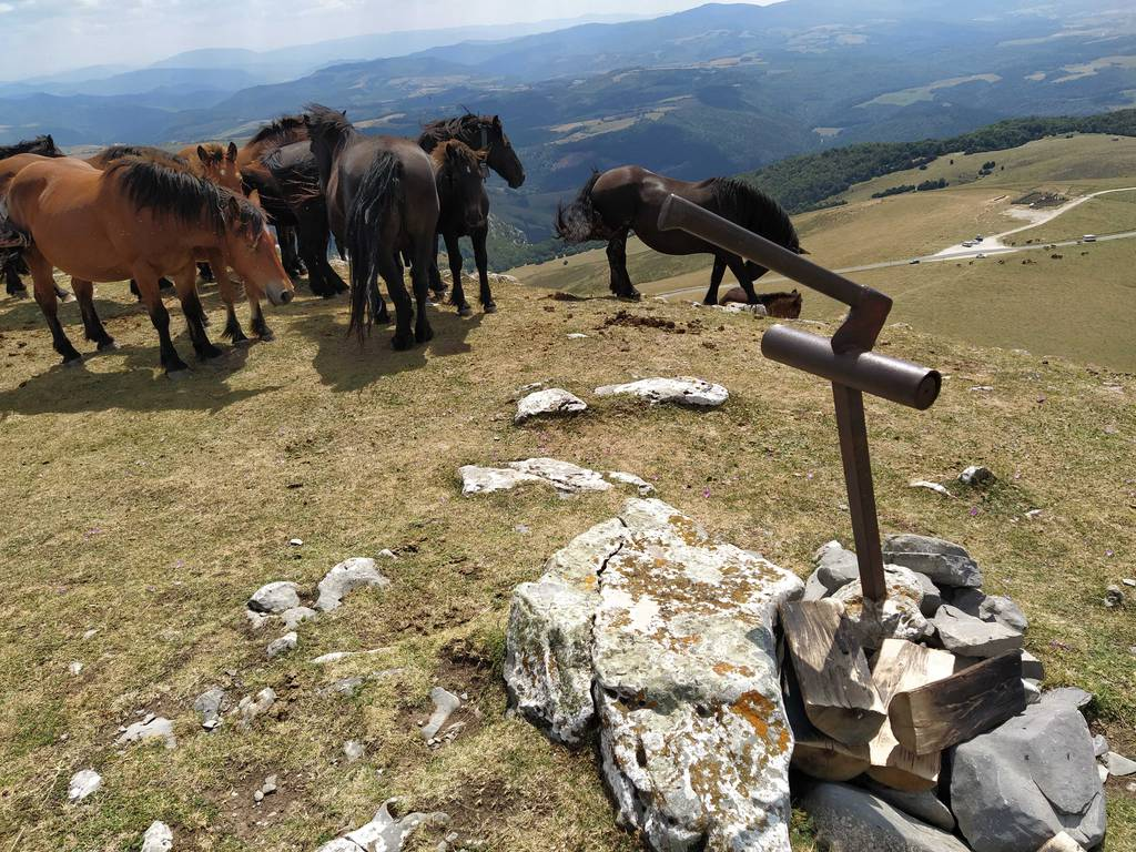 Gurpiltrek by Kemen erabiltzailea Idorrokia puntan, 2020-08-14 14:57