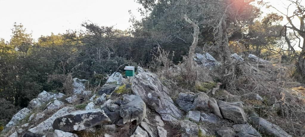 Iñaki Carrero Bujan erabiltzailea Zeata puntan, 2020-09-22 08:59