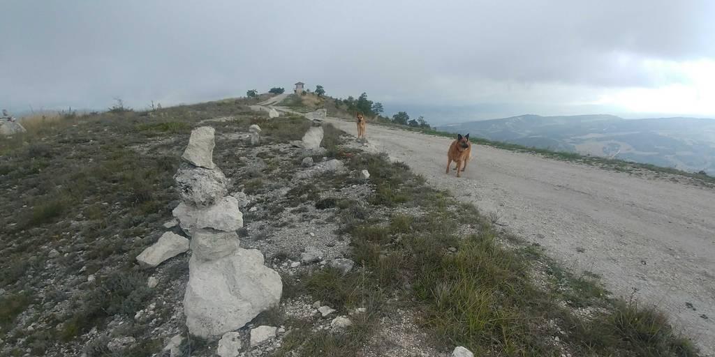 MIKEL ARRIBAS erabiltzailea Cerro puntan, 2020-10-01 10:43