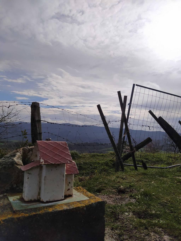 Irati Garcia erabiltzailea Lendizgana puntan, 2021-02-13 11:34
