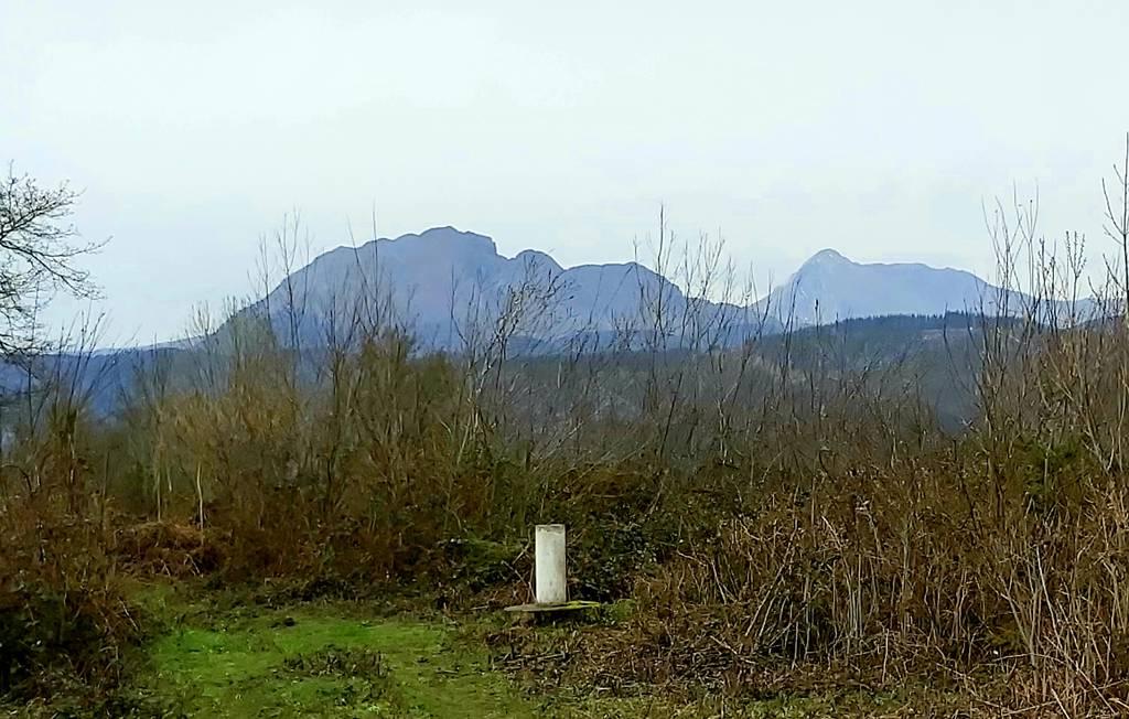 Txema Arenaza erabiltzailea Aingelu puntan, 2021-02-13 13:45