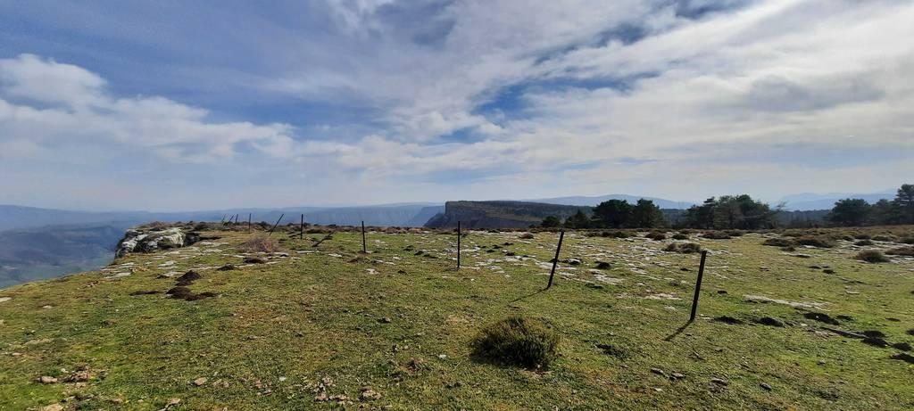 Sergio Morales erabiltzailea Bedarbide puntan, 2021-02-20 14:04