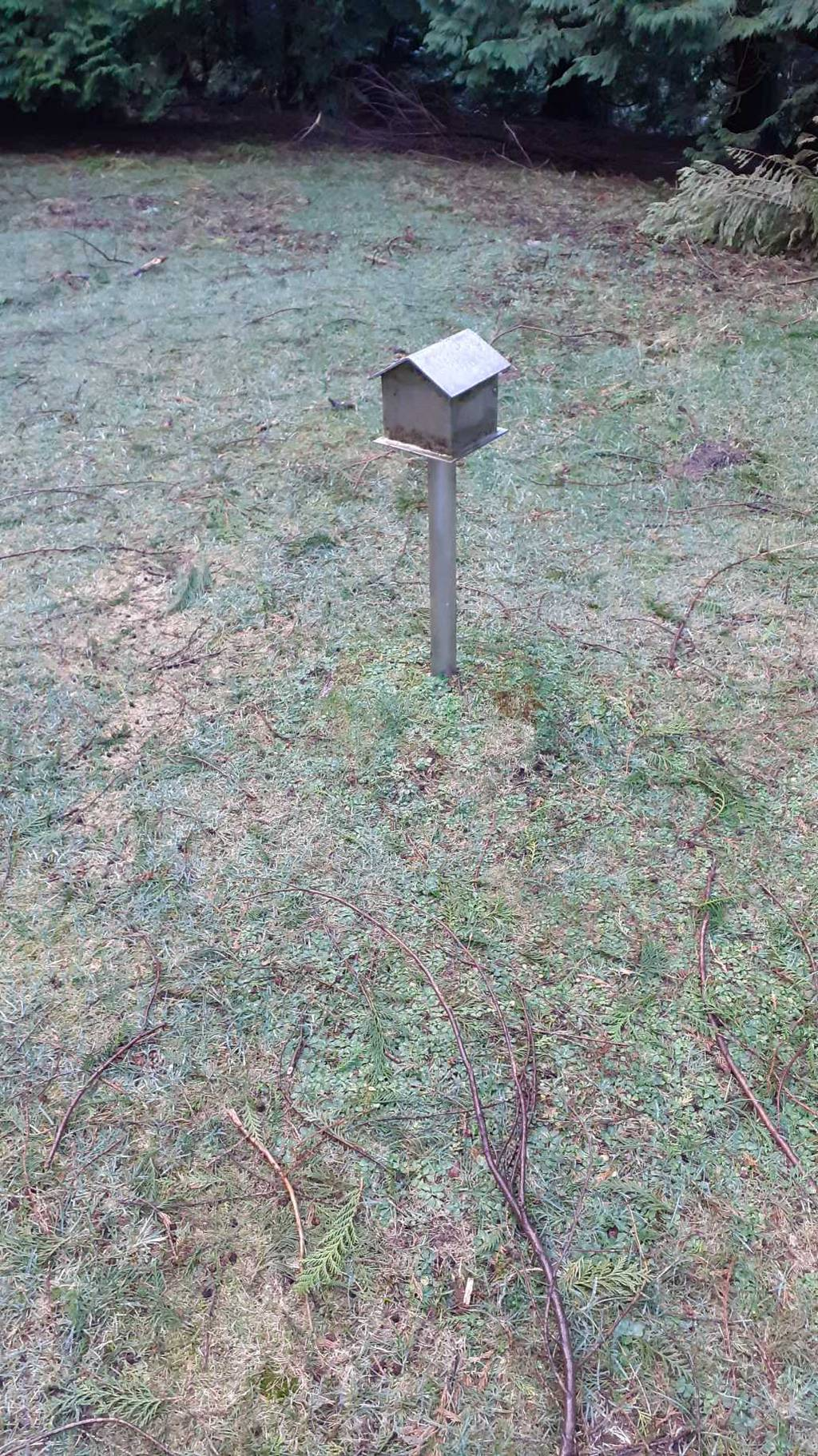 lina aranceta erabiltzailea Arluziaga puntan, 2021-02-23 08:28