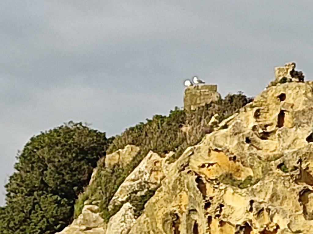 Amaitbe erabiltzailea San Anton puntan, 2021-03-15 17:34
