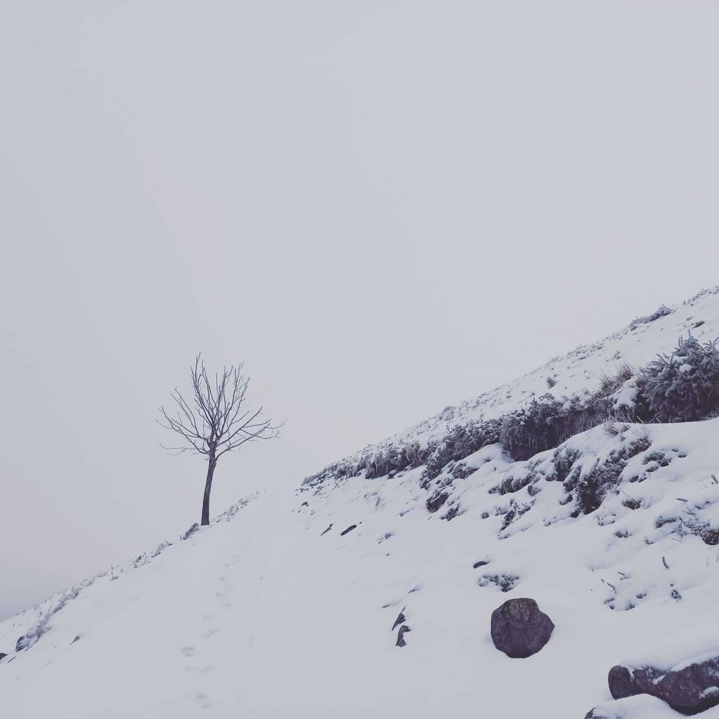 Aran Barreros erabiltzailea Gorgomendi (Aloña) puntan, 2021-03-20 15:59
