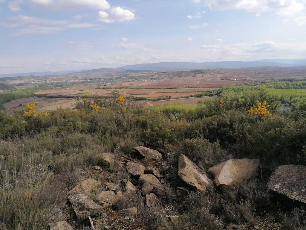 Nahikari Ayerdi Barandiaran erabiltzailea San Quiles puntan, 2021-04-14 17:34