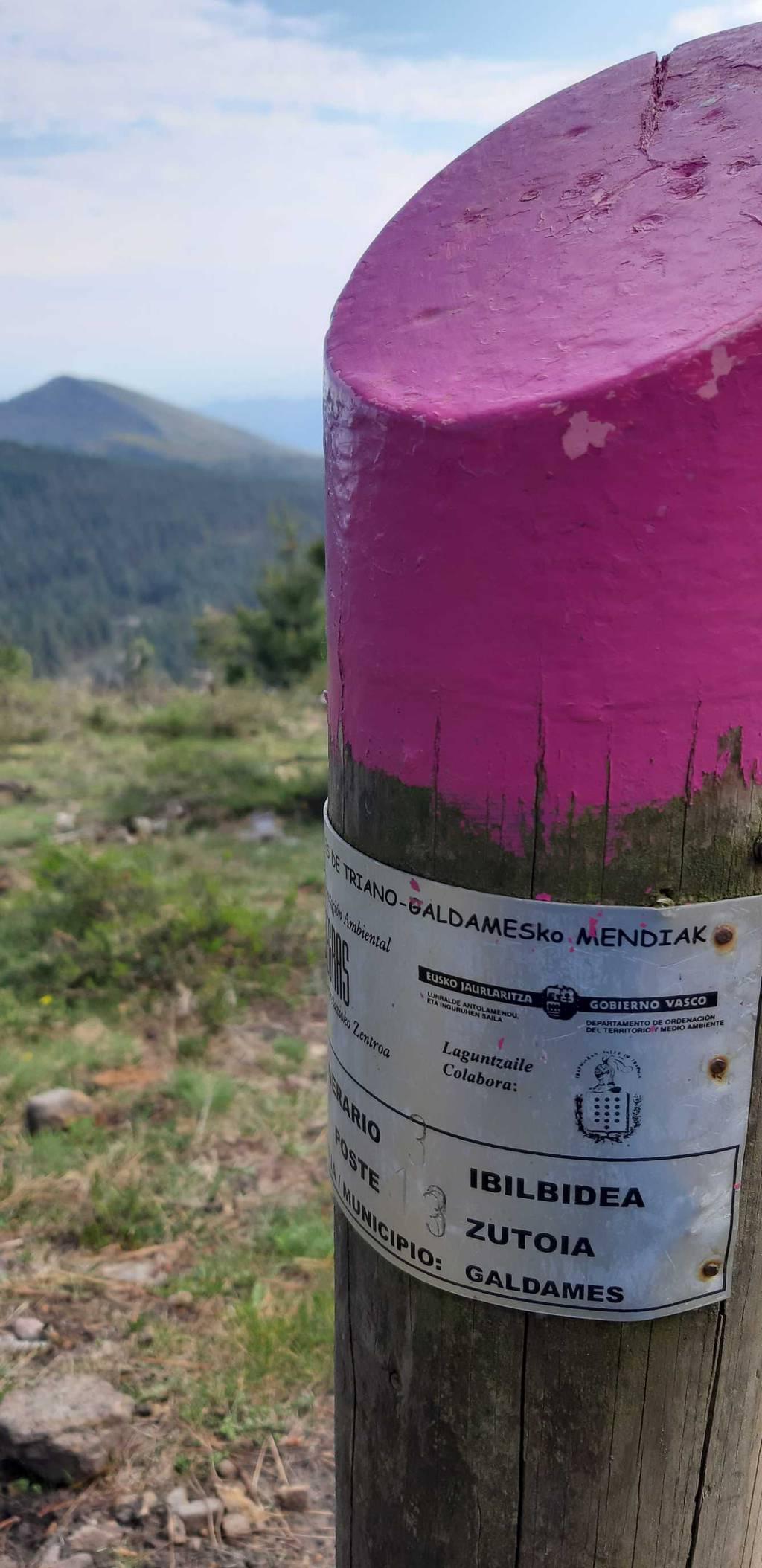Irrintzi L erabiltzailea Picomayor puntan, 2021-04-20 17:40
