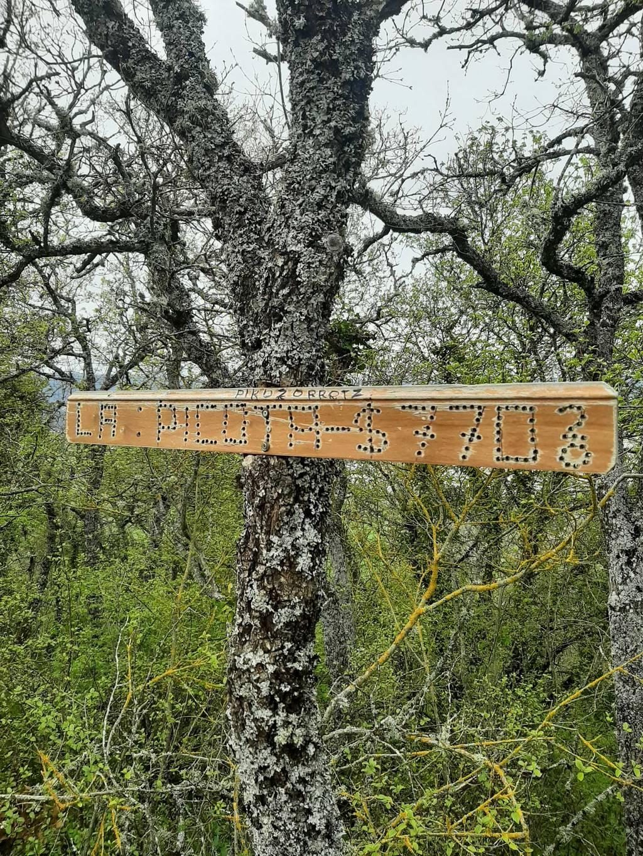 Unai Larrauri erabiltzailea Pikozorrotz puntan, 2021-04-23 17:44