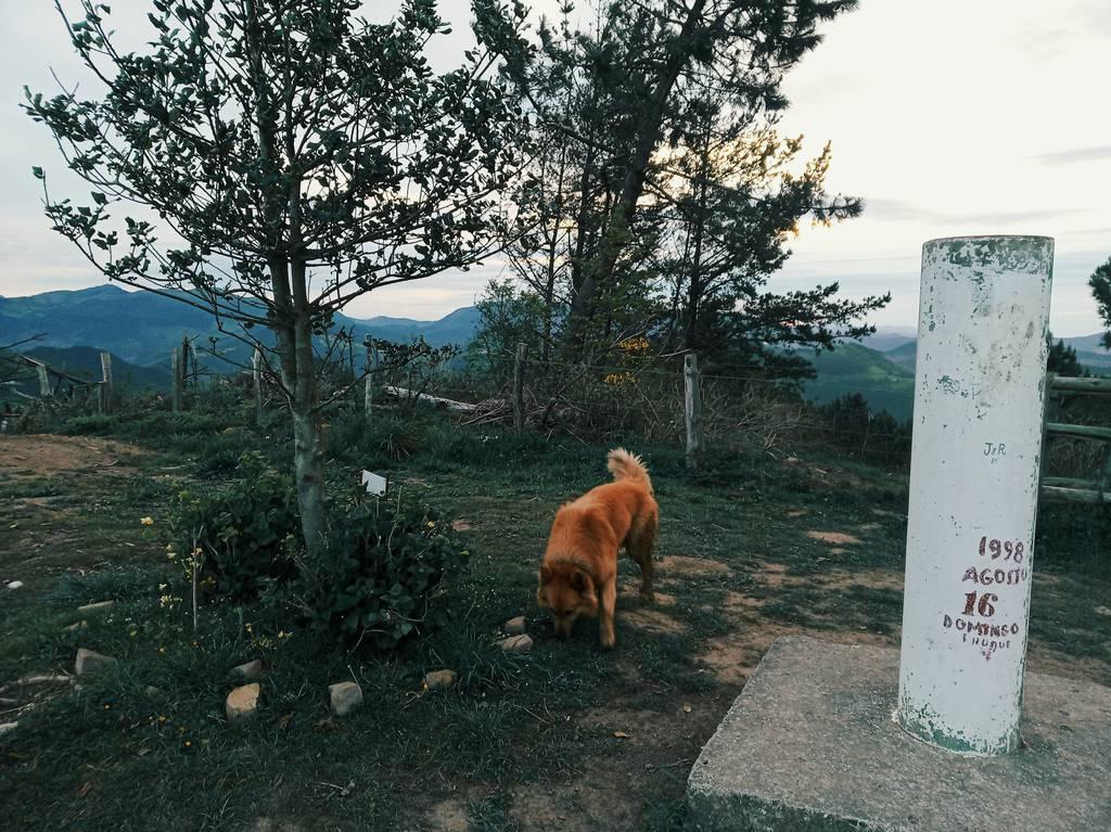 Izarra Aizpurua erabiltzailea Tontorramendi puntan, 2021-05-04 20:59