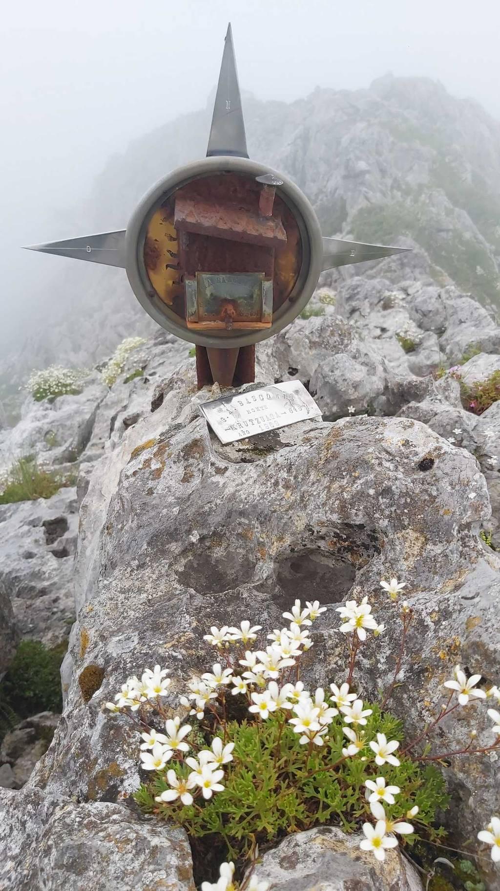Txema Arenaza erabiltzailea Krutzuaga (Antzubil) puntan, 2021-05-29 10:27