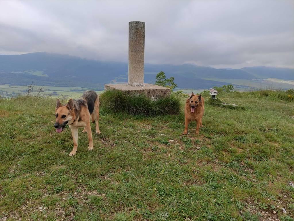 MIKEL ARRIBAS erabiltzailea Cerro puntan, 2021-06-02 10:36