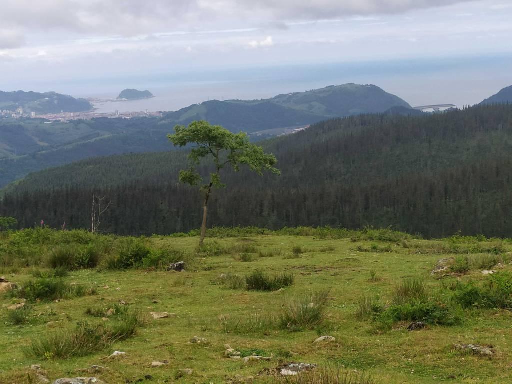 Ttipi Ttapa erabiltzailea Ziortza (Ondabare) puntan, 2021-06-05 10:19