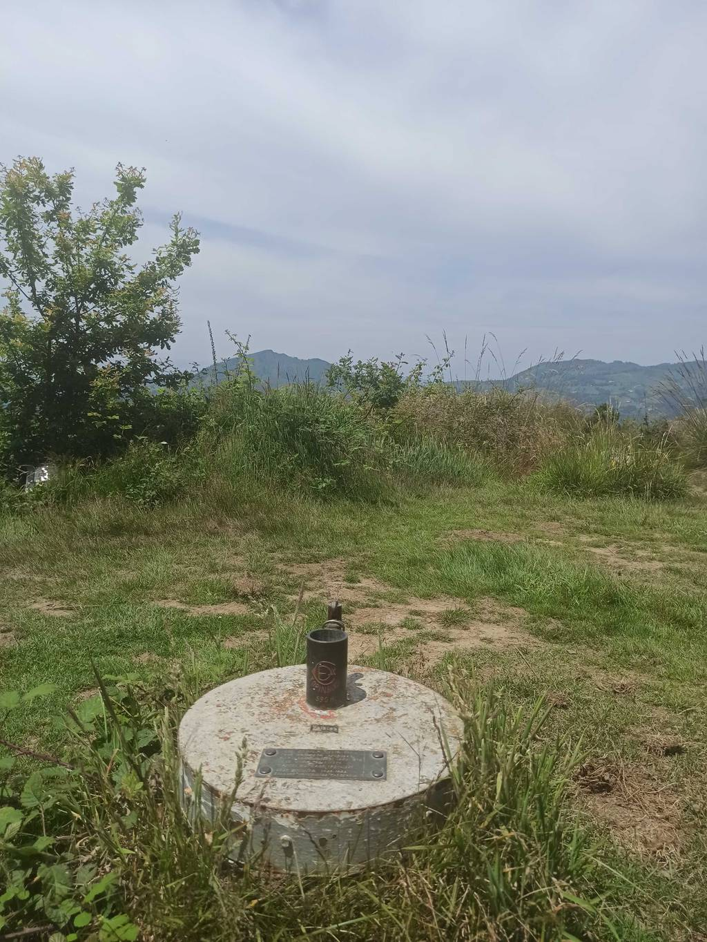 jone uria erabiltzailea Topinburu puntan, 2021-06-26 14:36