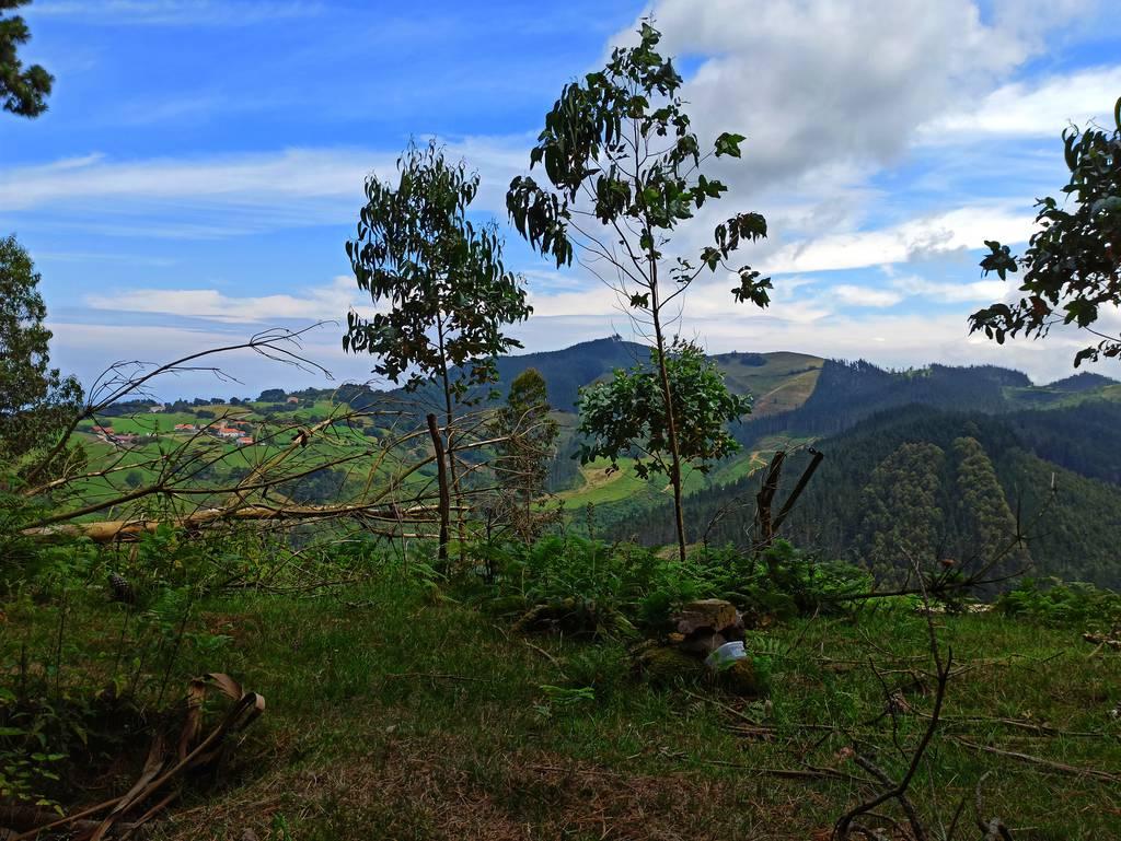 AmaiaZ erabiltzailea Txindurri puntan, 2021-07-03 13:41