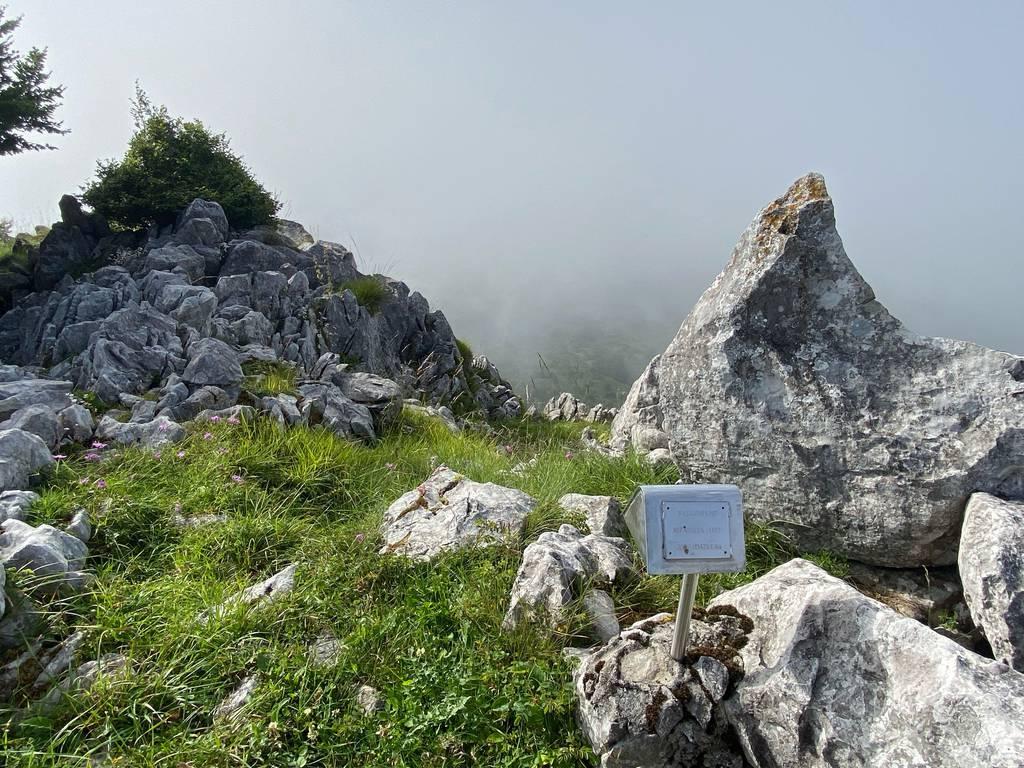 Enaitz Cuevas erabiltzailea Asparreta puntan, 2021-07-09 18:29