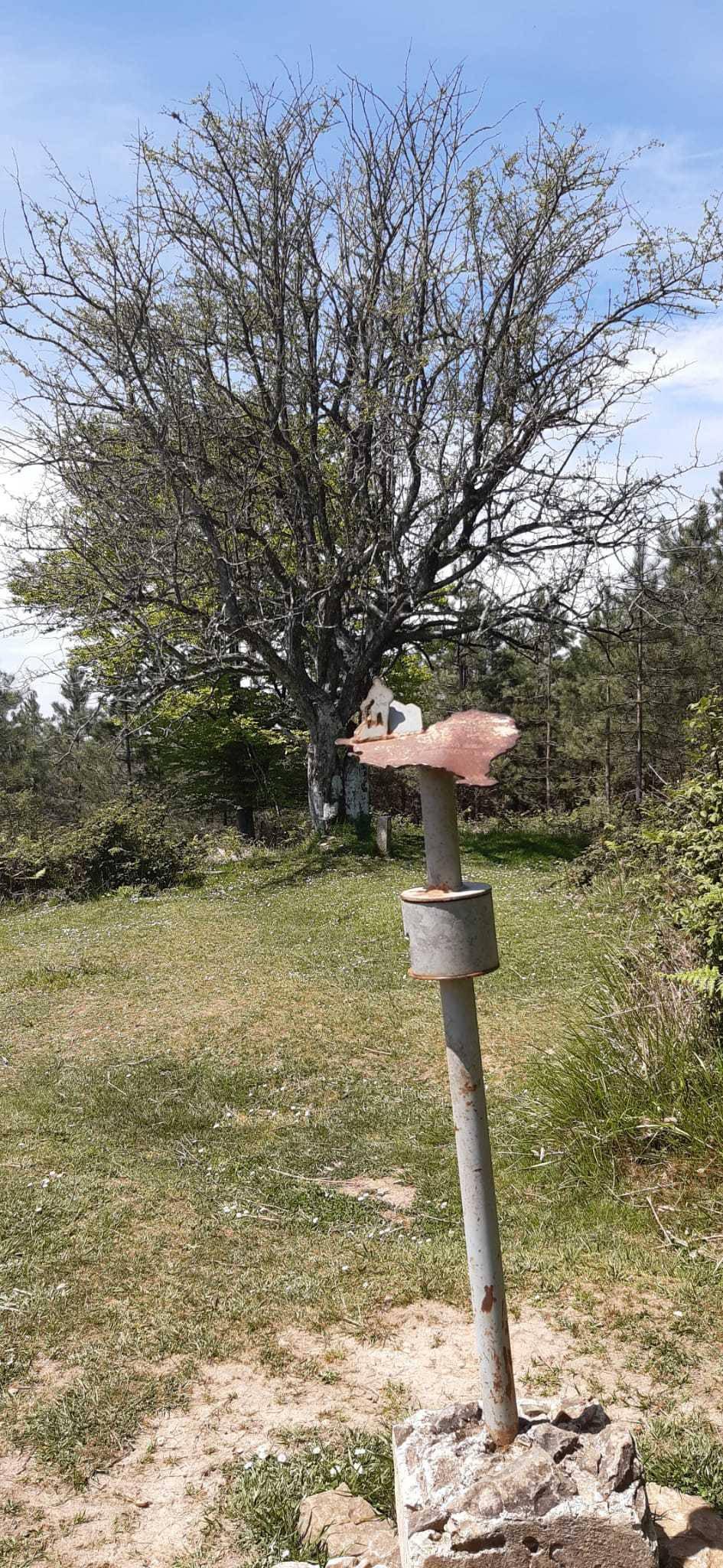 Nekane Jau erabiltzailea Txintxularra puntan, 2021-05-08 17:07