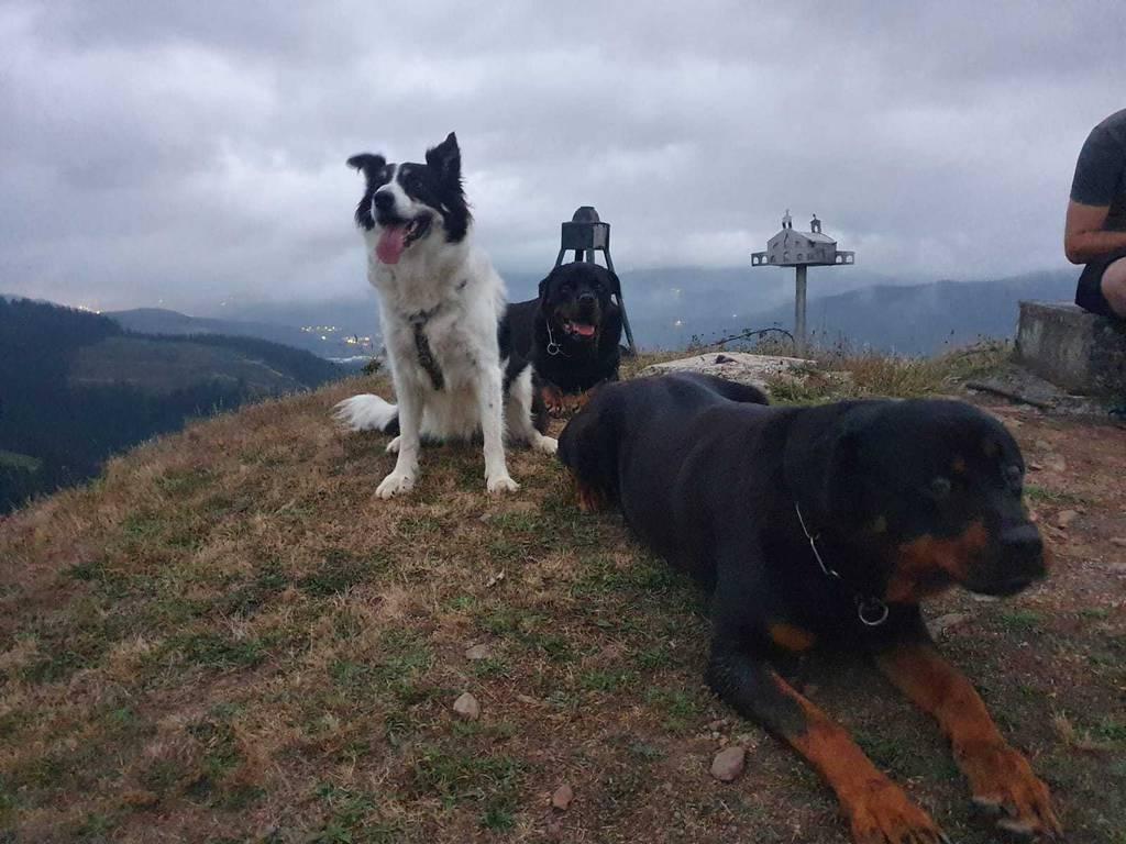 Aitor Mardaraz erabiltzailea Alpitsu puntan, 2021-08-05 22:00