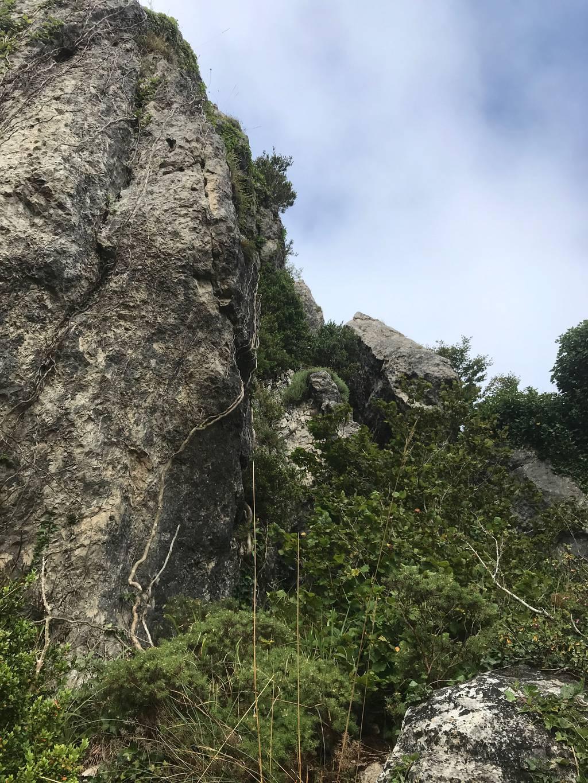 Axier Arruti erabiltzailea Eskamelo Oriental puntan, 2021-08-17 10:36