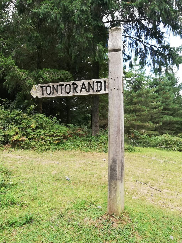 Ibon Zaitu erabiltzailea Tontorrandi puntan, 2021-08-24 12:51