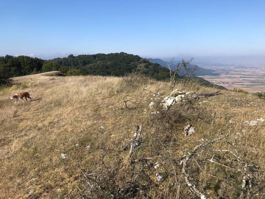 Axier Arruti erabiltzailea Soil puntan, 2021-09-05 10:40