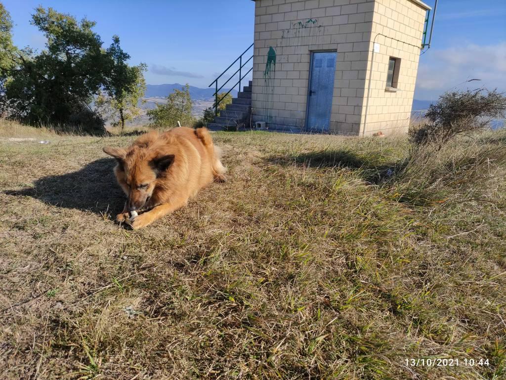 MIKEL ARRIBAS erabiltzailea Cerro puntan, 2021-10-13 10:46