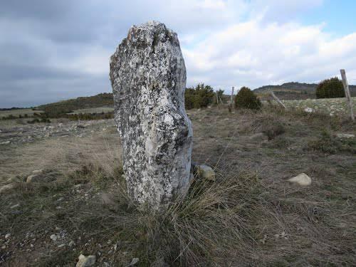 Aritzandia mendiaren argazkia